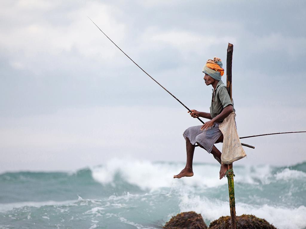 包羅萬象 斯里蘭卡全景之旅