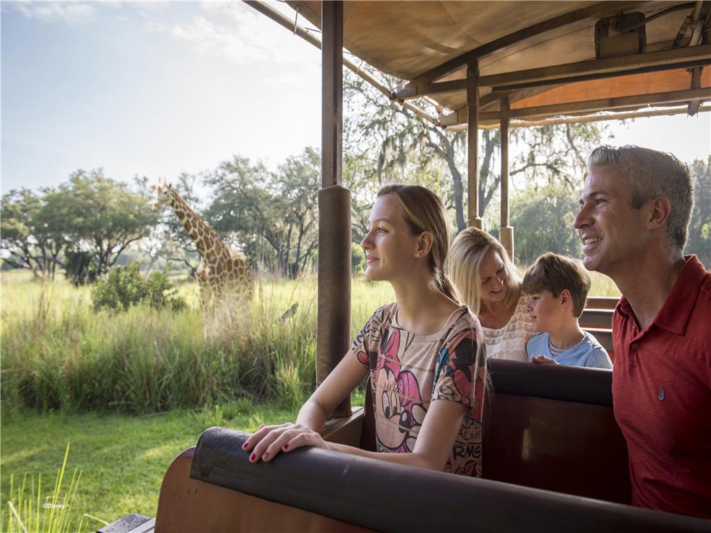 【佛罗里达假期】玩转奥兰多主题乐园(四晚迪士尼酒店+四大主题乐园+环球影城+奥莱)